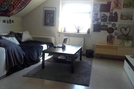Helle große  1 Zi.Wohnung in LU-Oggersheim - Ludwigshafen am Rhein - Wohnung