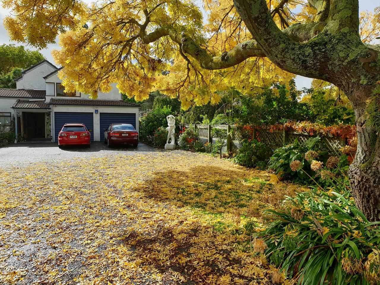 Entrance to our house as seen in Autumn. Your car park by the front porch!