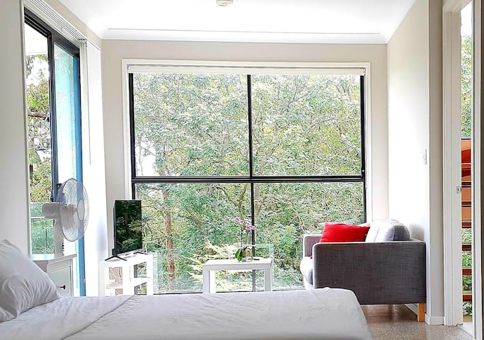 Spacious Modern Studio near UQ, QUT, CBD&Transport