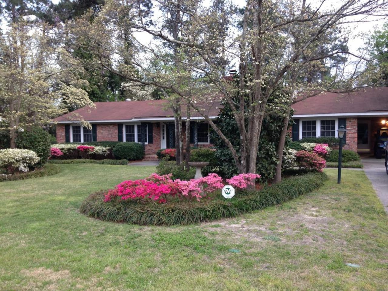 Azalea's in bloom for the Masters