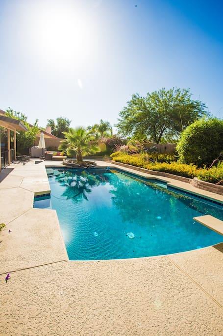 Resort pool in zen garden close to spring training for Garden training pool