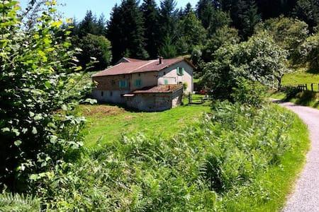 Huis in Midden-Frankrijk te huur (Chauffailles) - Chauffailles - Talo
