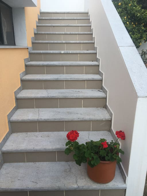 Stairs leading to both apartments. There is rear access to apartment 2 with 3 steps.