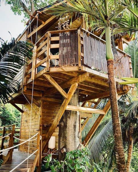 TI'BAKOUA - Cabane TI'BAO - Anses d 'Arlet