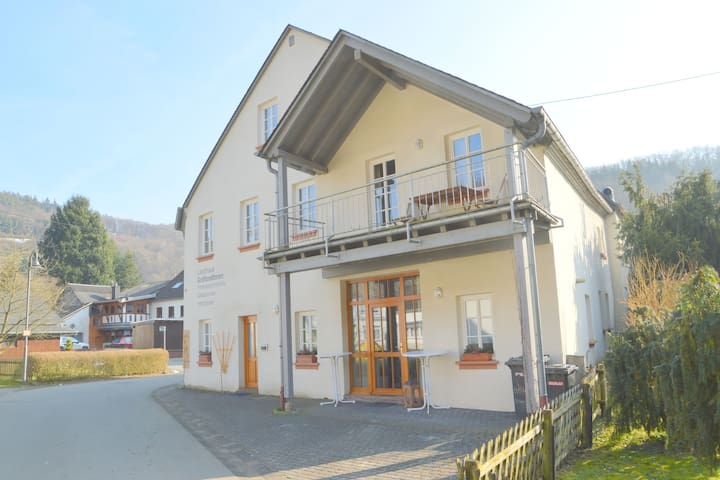 Fine spacious and modern apartment in the heart of the magnificent Hunsruck scenery