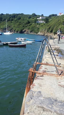 Breath taking coastal cottage £50 for double room - Solva - Bed & Breakfast