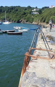 Breath taking coastal cottage £25 - Solva - Casa