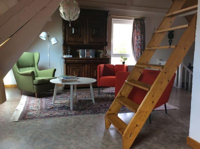 loft  50 M2 ambiance cosi - Uffholtz