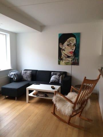 Bright, spacious apartment. Close to city centre. - København - Apartment