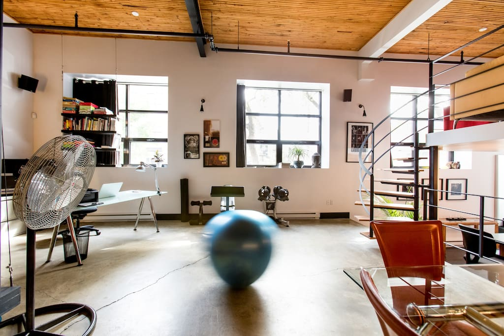 Three large windows, two weights for training and a blue ball, always moving :-) -  Trois grandes fenêtres, deux poids pour l'entrainement et un ballon bleu, toujours en mouvement :-)