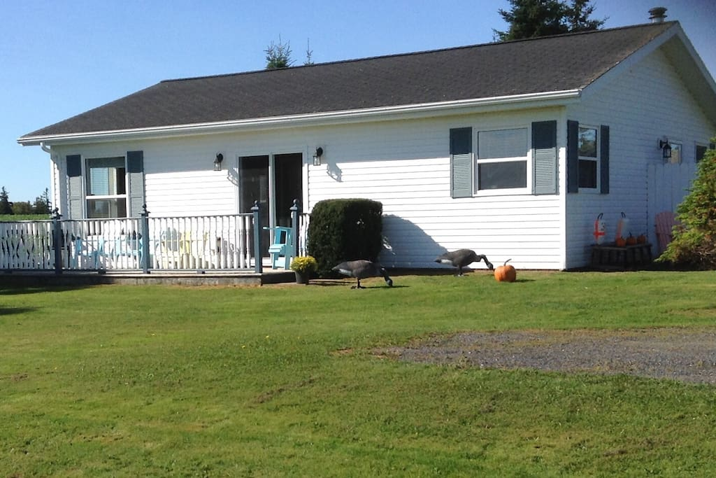 Fully winterized house available year round.   Perfect for fall activities in PEI!