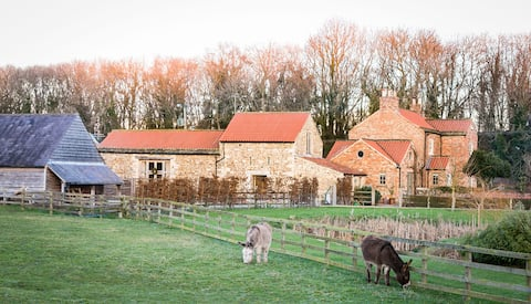 The Hayloft  - Beautiful Romantic retreat for 2