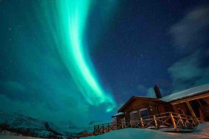 Charming cabin - Senja