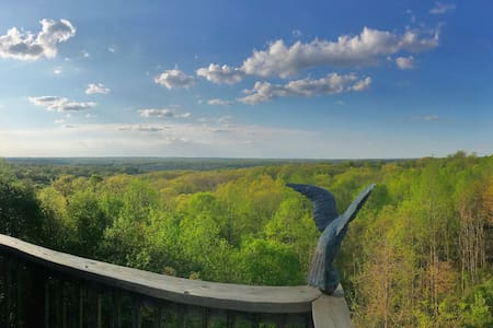 Amazing View Treetop Suite