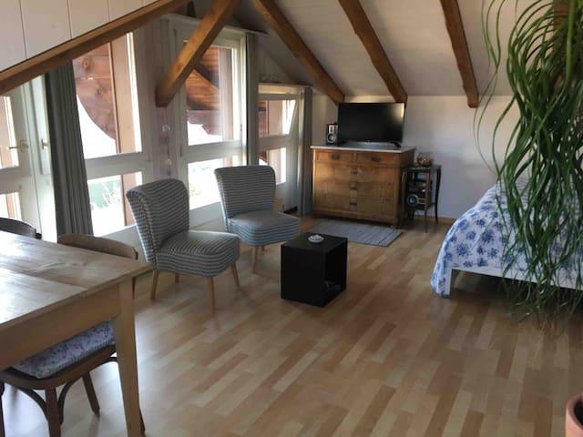 Liebevolles Studio mit Bergsicht