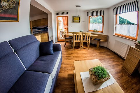Two Bedroom Apartment BBI in Savinjska region