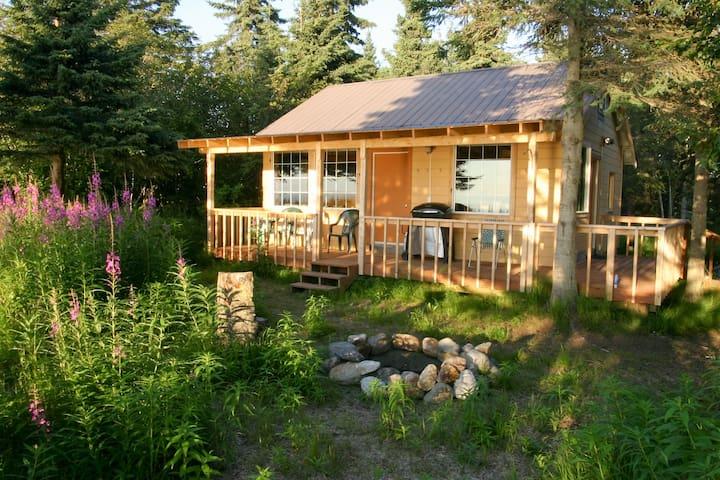 Clam Gulch Lodge - Eagles Nest Cabin