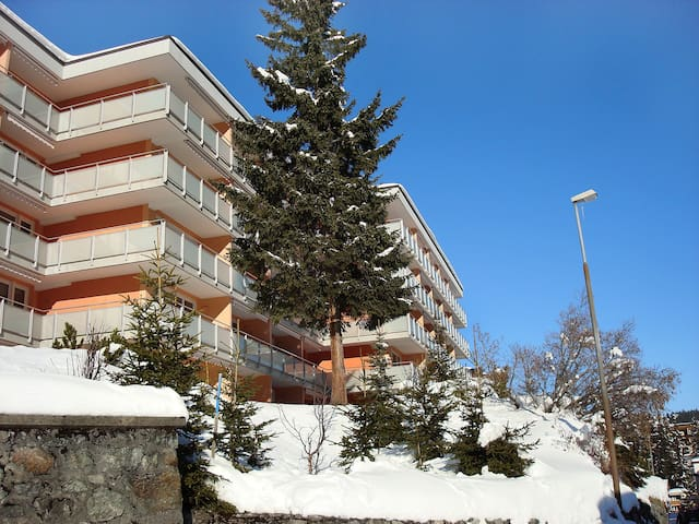 1-room apartment Promenade (Utoring) in Arosa