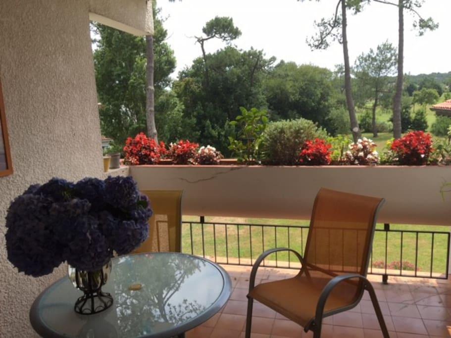 spacieuse  terrasse SUD sur parc et golf