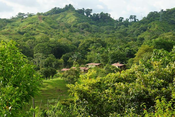 Rancho Las Tilapias  Costa Rica #1