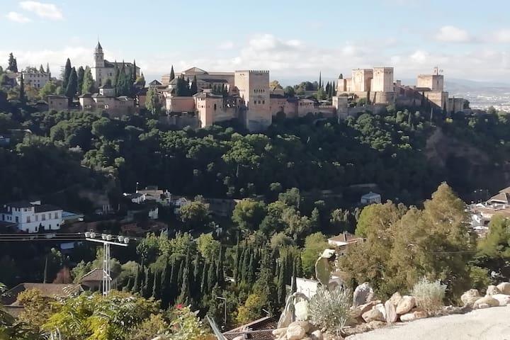 Paraje rural vista alhambra