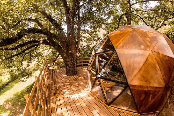The Chulavista Dome