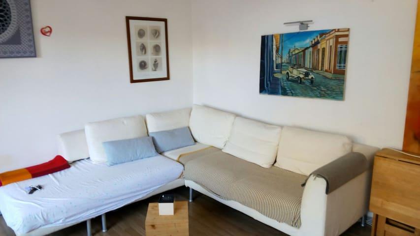 Spelndido villino con giardino + stab. balneare - Francavilla al Mare - House