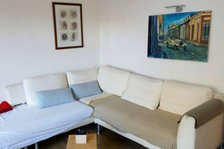 Spelndido villino con giardino + stab. balneare - Francavilla al Mare - 独立屋