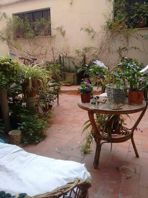 Terraza - Terrace