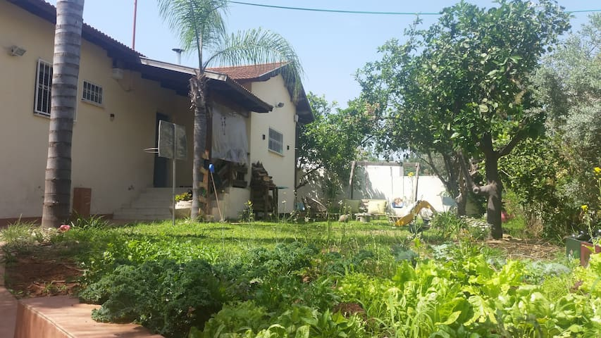privte house 15 min from tel aviv - Hod Hasharon - Casa