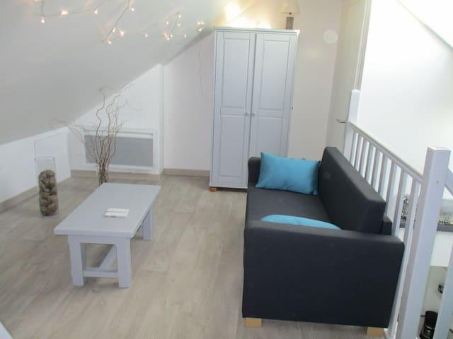 Beau studio entièrement rénové idéalement situé - Arras - Huoneisto
