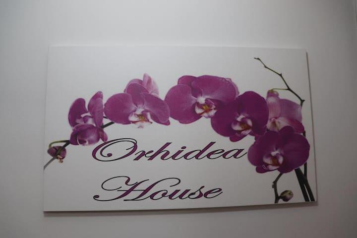 Orhidea House/ Triple Room