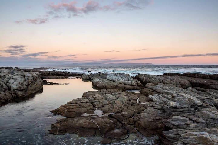 Beachfront★Whale Views★Couple Retreat★Safe Estate★