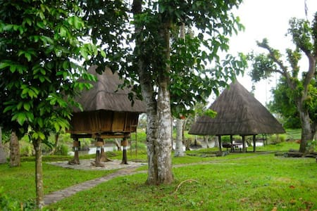 Cozy Authentic Ifugao Houses - Pila - Bed & Breakfast
