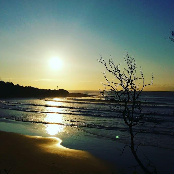 Freshwater Beach - approx 10 minute stroll away