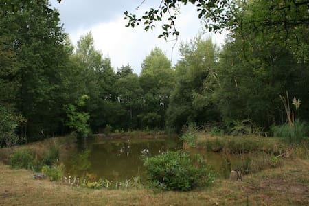Le Patis des Gardoirs - Vannes-sur-Cosson - Hotel ekologiczny