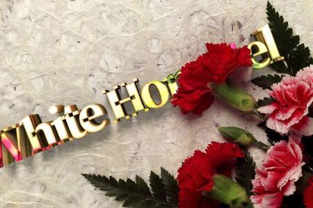 White Hometel Suiteroom | 화이트 홈텔 스위트룸