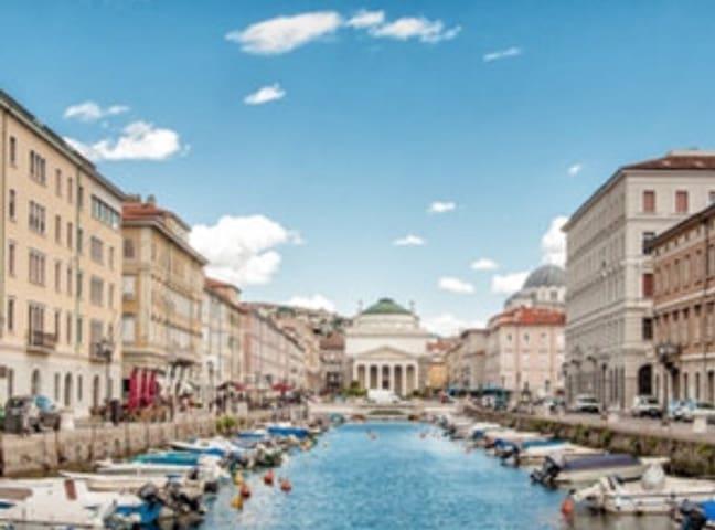 Monolocale Trieste