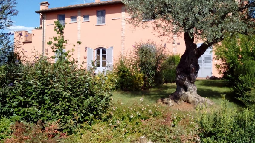 Apartment in the countryside with swimming pool - Arezzo - Byt