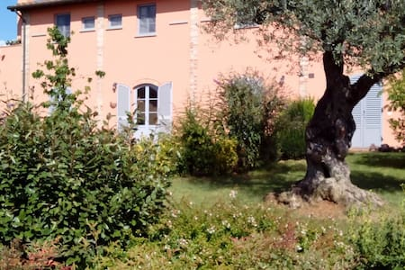 Apartment in the countryside with swimming pool - Arezzo