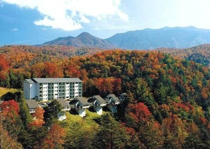 Two Bedroom Condo at Mountain Loft Resort (Z53)
