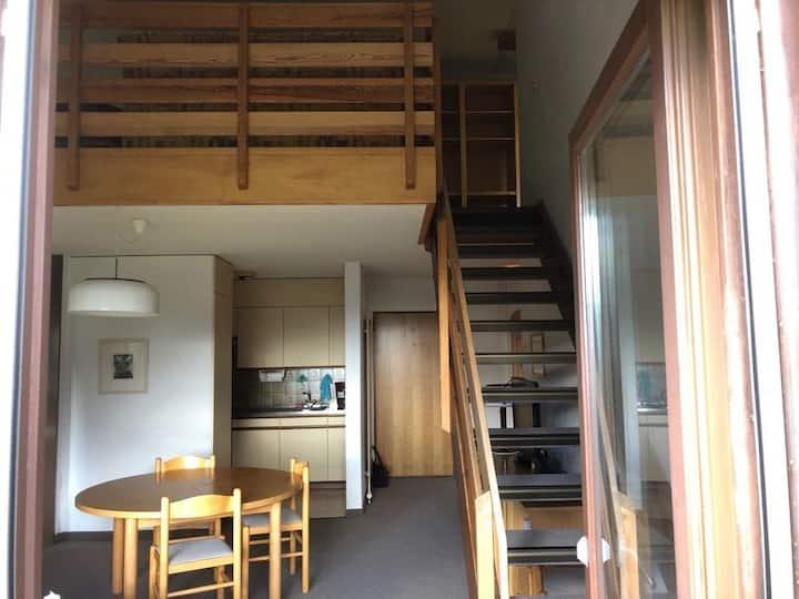 Maisonette Wohnung in Disentis