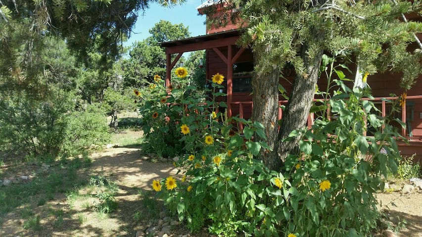 Santa fe Country Cabin, private, 15 min to Plaza - Santa Fe - Casa de campo
