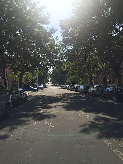 There's nothing like a well established neighborhood with beautiful try lined streets!