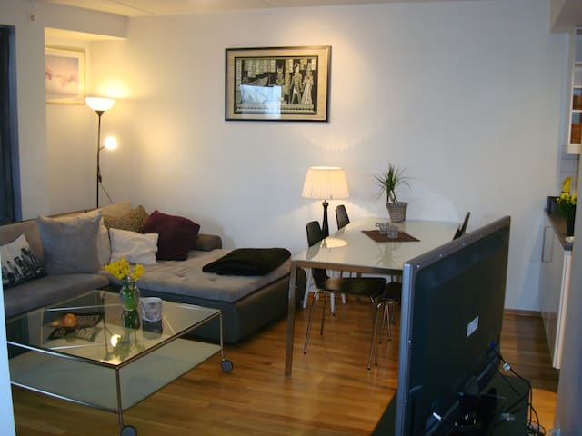 Modern apartment, Sjølyst (Skøyen) - Oslo
