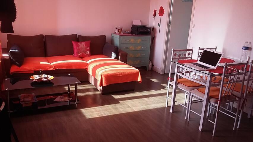 Bel appartement a proximité du centre d'Orléans