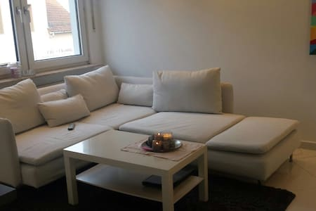 Clean modern apt 10 min to airport and City Center - Neu-Isenburg