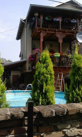 Cozy country house with many facilities - Novi Sad - Villa