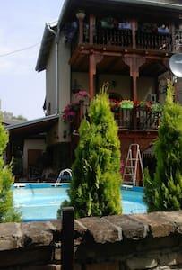 Cozy country house with many facilities - Novi Sad