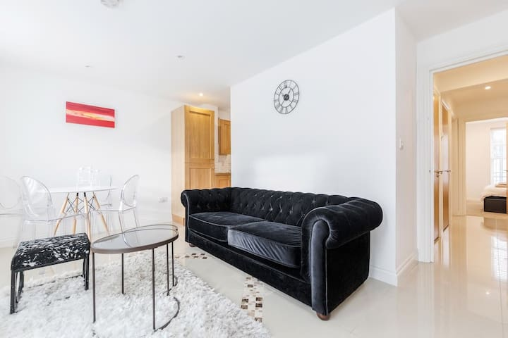 Beautiful flat walking distance from Westminster!